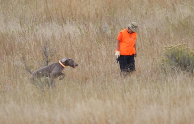hunt-test-4