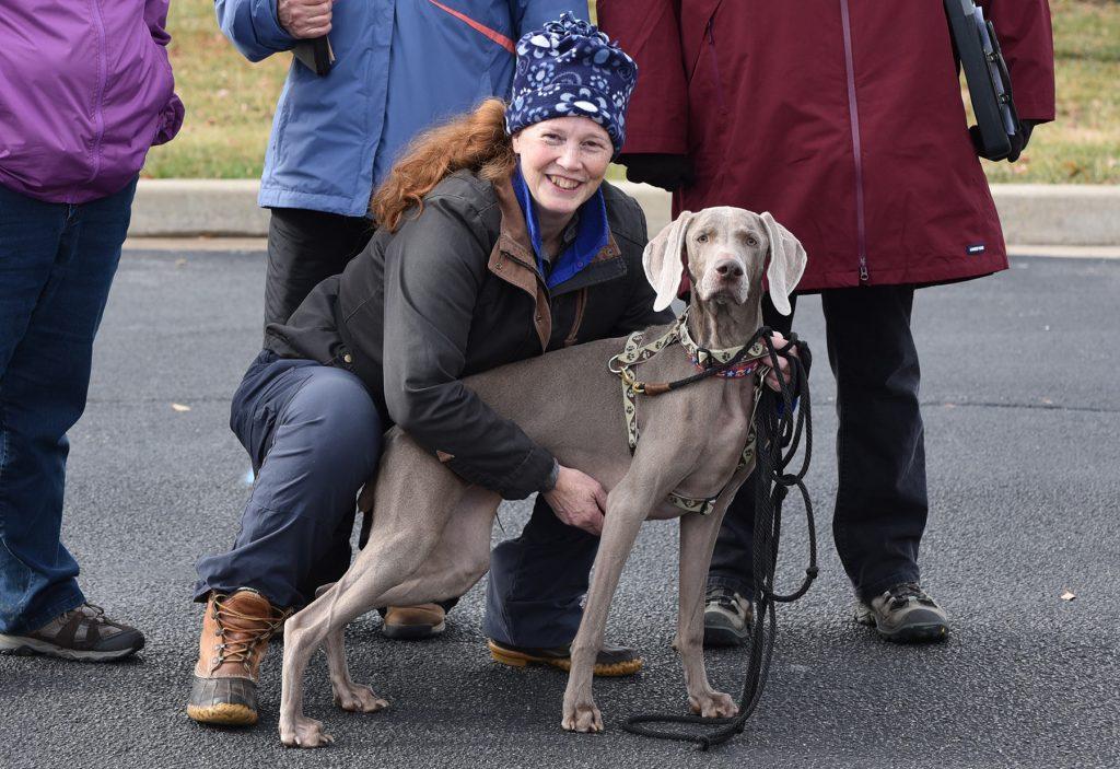 Eliza Champion Tracker
